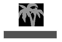 ikona palmy